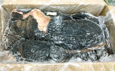 พุงดำ(Tripe Crue)(10KG)AFRIPES(เขียว-เหลือง)