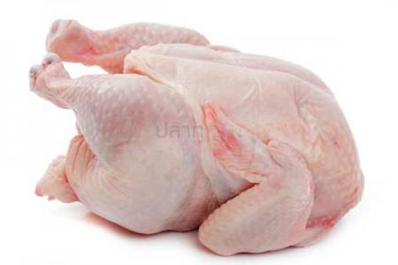 ไก่ตัว ไก่แม่พันธุ์ (3KG)