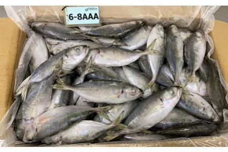 ปลาตาโต6-8AAA(ขาว)(10KG)